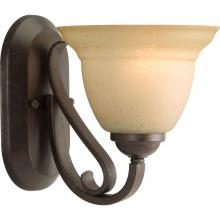 Progress P2881-77 - 1-Lt. Forged Bronze Bath Light