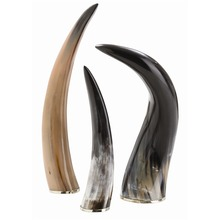 Arteriors Home 6323 - Bernard Horns, Set of 3